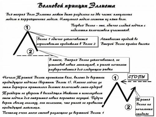 SPRAVKA-VOLNOVOIPRINTIPELLIOTA-TOMDZONS-VOLNYEMOTII1.jpg