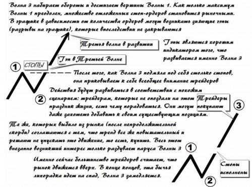 SPRAVKA-VOLNOVOIPRINTIPELLIOTA-TOMDZONS-VOLNYEMOTII2.jpg