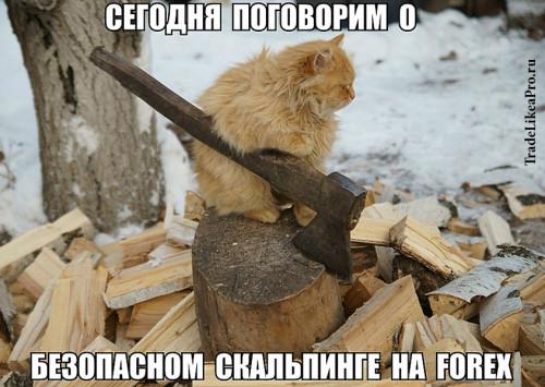 BEZOPASNYI-SKALPING.jpg