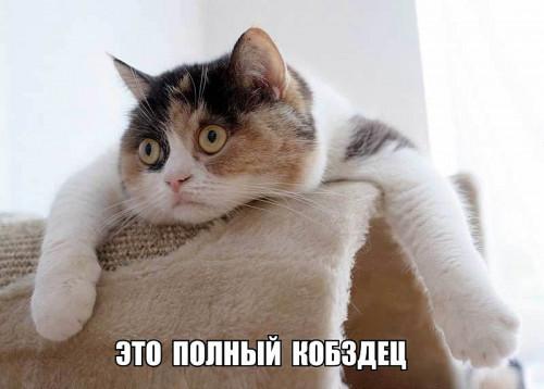ETO-POLNYI....jpg