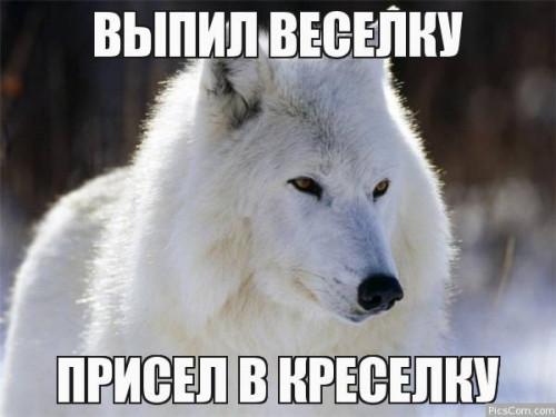 1261566274418.jpg