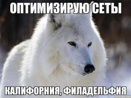 4461566362648.jpg