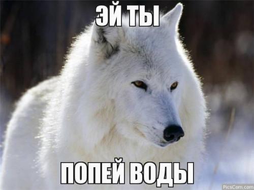 76691566360833.jpg
