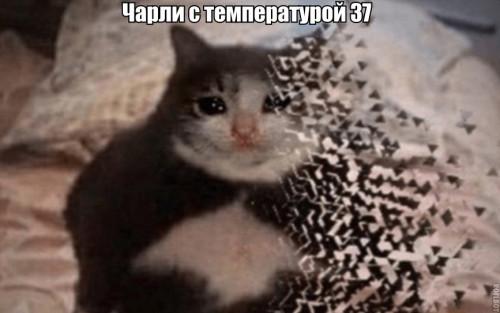 OOO.jpg